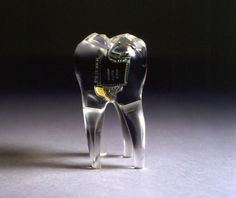 Top 10 Implantable Wearables Soon To Be In Your Body