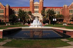 10 Ways to Meet Sensatio-NOLE Students at FSU