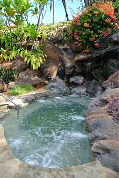 hawaiian pools and waterscapes - Google Search