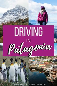 Driving to or around Patagonia is a means of exploring a remote destination that has attracted adventurers for centuries. This guide follows my multiple visits to Argentine and Chilean Patagonia, where I've rented a car and learned a lot about driving and road conditions along the way.I've collated all of the information you need to know about car rental in Patagonia, getting around Patagonia on your own four wheels and I've even thrown in a road trip itinerary to get the inspiration…