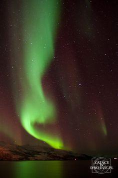 #aurora borealis near Tromso, Norway. Northern lights