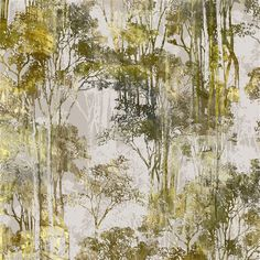 Ethereal and modern print of treescapes on cotton velvet. How timeless.  Enchanted Wood by Brian Yates