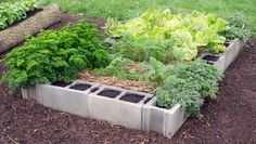 Concrete Blocks http://www.rodalesorganiclife.com/garden/5-raised-bed-designs-you-can-make-in-an-afternoon/slide/4