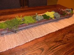 Vintage chicken feeder planter as our dining room table centerpiece-filled with succulents and miniature grasses and mosses. The table was hand-built by my father-in-law by the way! Isn't it beautiful? Plant Containers, Container Plants, Air Plants, Indoor Plants, Dining Room Table Centerpieces, Chicken Feeders, Hobby Farms, Grasses, Farm House