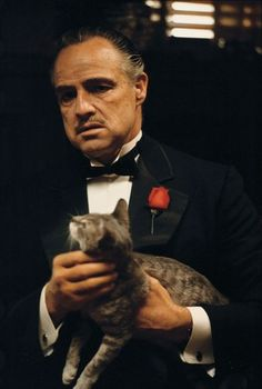 Marlon Brando and the cat from The Godfather.