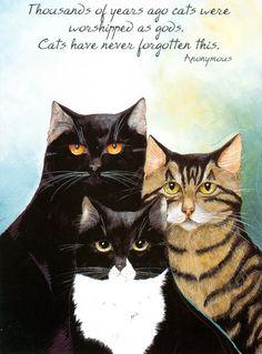 Gatos e outros bichos | MarenSchaffner-Cats-Rule