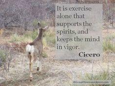Cicero Quote