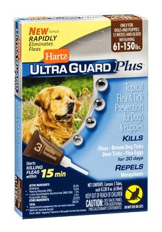 Hartz Ultra Guard Plus Topical Flea and Tick Prevention For Dogs and Puppies 61-150lbs EA (Pack of 12) * Find out more about the great product at the image link. (This is an affiliate link and I receive a commission for the sales)
