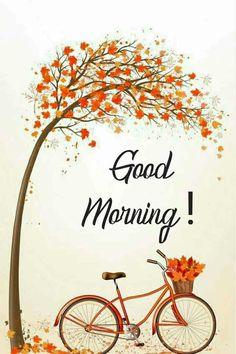 Beautiful Morning Messages, Good Morning Beautiful Pictures, Good Morning Images Flowers, Good Morning Roses, Good Morning Gif, Good Morning Picture, Good Morning Greetings, Morning Pictures, Best Good Morning Texts