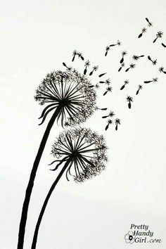 Floeer