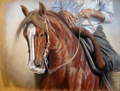 Cavalo e Gaúcho Pintura