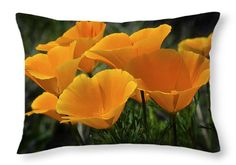 "A Bouquet of Poppies  20"" x 14"" Throw Pillow by Saija  Lehtonen.  Multiple sizes available. © Saija Lehtonen Photography saija-lehtonen.artistwebsites.com"