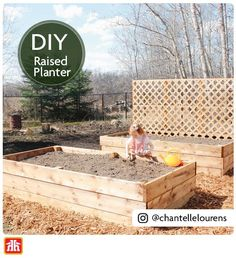 Grow your own vegetables in your backyard with a raised planter.