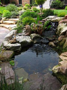 Small Water Gardens, Fish Pond Gardens, Backyard Water Feature, Ponds Backyard, Hillside Landscaping, Outdoor Landscaping, Pond Waterfall, Natural Pond, Pond Plants