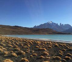 Laguna Amarga Torres del Paine southern Chile #horseridingpatagonia #horse #horseriding #patagonia #holiday #vacation #horsebackriding #ridingholiday #torresdelpaine #guachos #glaciers #lagunaamarga