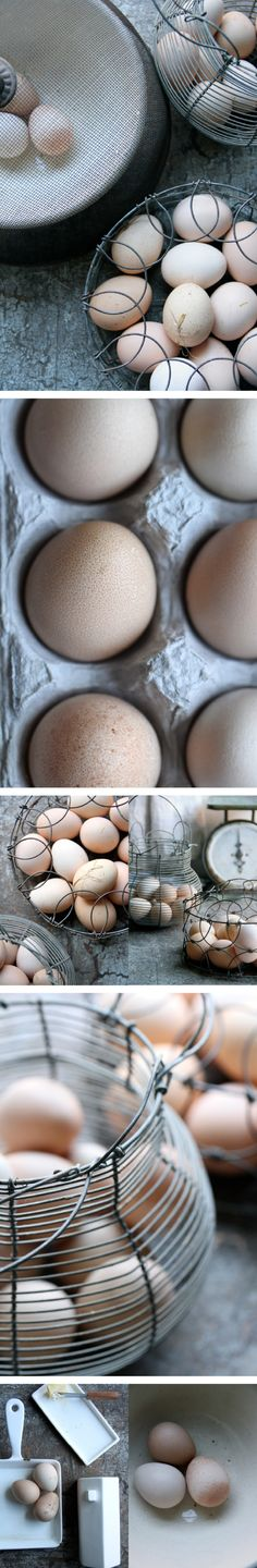eggs delivered fresh from the farm | varied POV makes interesting groupings