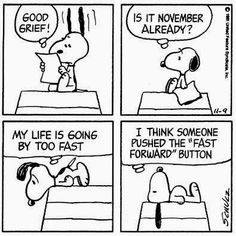 snoopy knows..