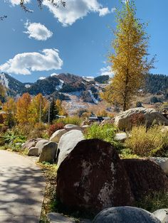 Aspen Snowmass, Mount Rainier, Mountains, Nature, Travel, Naturaleza, Viajes, Destinations, Traveling