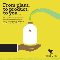 We own our own plantations and monitor the whole process from the field to the factory to the amazing products to you!