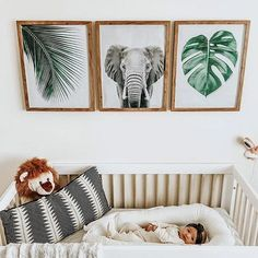 Jungenzimmer, aber auch eine süße, reife Noah-Arche-Party-Idee You are in the right place about baby room decor owls Here we offer you the most beautiful … Boho Nursery, Nursery Neutral, Nursery Room, Girl Nursery, Safari Nursery, Animal Theme Nursery, Animal Decor, Noahs Ark Nursery, Nature Themed Nursery