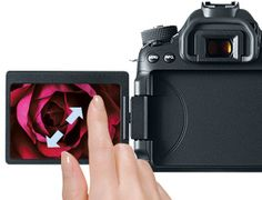 Canon EOS 70D: A New Sensor, Refined AF and Wireless Connectivity | BH inDepth