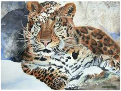 Stephanie Zobrist Watercolor Amur Leopard 40x60cm