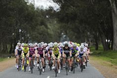 Sam Miranda Tour of the King Valley - Day 2 Cycling, Bicycle, Tours, King, Events, Day, Bicycle Kick, Happenings, Biking