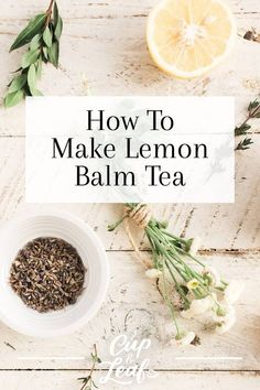 How To Make Lemon Balm Tea - Cup & Leaf We'll show you the health benefits, flavor, and techniques for harvesting so you can brew the best cup of lemon balm tea. Find our favorite lemon balm recipes and relish the lemony and minty tea. Lemon Balm Recipes, Lemon Balm Uses, Tea Recipes, Lemon Balm Tea Benefits, Lemon Verbena Recipes, Salate Warm, Dried Lemon, Paleo, Vegan Vegetarian