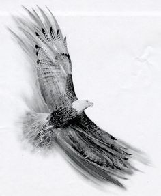 Soaring Eagle by Basixofblack on deviantART Tattoo idea...