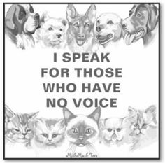 Animal cruelty must stop,support those who help to prevent and always report abuse. To animal rescue groups everywhere, I SAY THANK YOU! Animals And Pets, Cute Animals, Stop Animal Cruelty, Animal Quotes, Animal Facts, Animal Cruelty Quotes, Animal Welfare, Animal Rights, Humane Society