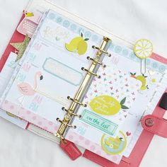 In my Light Pink Webster's Pages Color Crush Planner:: Anabelle O'Malley