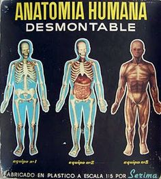 Juegos y Juguetes de Antaño: El juego de la Anatomía Humana