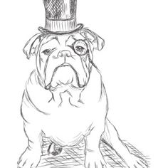 Fat Bulldog Like Towel Coloring Pages Dog Coloring Pages