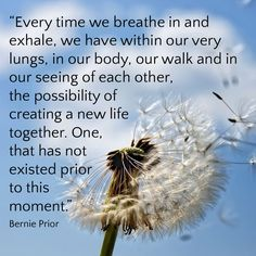 Bernie Prior (known as B) is a World Teacher whose life is utterly devoted to the awakening of humanity. World Teachers, Lungs, Health And Wellbeing, Our Body, New Life, Breathe, Boards, Healing, In This Moment