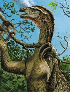 Artist Victor Leshyk's portrayal of the proto-feathered, Late Cretaceous dinosaur Nothronychus graffami dining upon mangroves
