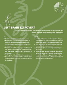 Armed Horsenality: Left Brain Extrovert Chart