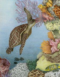 Another Swimming Turtle by fatboygotsick.deviantart.com on @deviantART