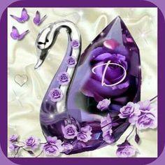 Purple Swan D