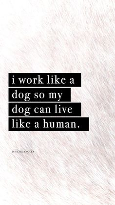 """I work like a dog so my dog can live like a human."", cute dog quotes, iphone and android wallpapers, motivational quote Cute Cat Quotes, Dog Quotes Love, Dog Lover Quotes, Dog Quotes Funny, Quotes To Live By, Pet Quotes, Dog Memes, Dog Lovers, Short Dog Quotes"
