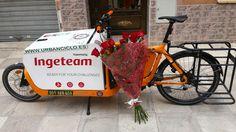 1'10 mts de Rosas. Www.urbanciclo.es - Tw: @urbancicloalba- f: Urban Ciclo - Instagram: @urbanciclo #urbanciclo #ecomensajeria #Albacete #cargobike #bicimensajeria #bikemessengers #bullitteer #bullitt #bullittlife #messlife #bikecourier #transportesostenible cargo bike ciclologistica sostenible bicicleta de carga