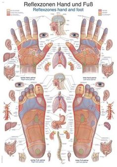 How to give a great massage Pictures) Herbal Remedies, Natural Remedies, Acupuncture, Health And Wellness, Health Fitness, Health Tips, Reflexology Massage, Reflexology Points, Massage Therapy