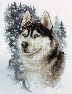 """Set for needlework cross stitch counting cross """"Husky"""" company PANNA DIY kit for embroidery dogs new year Christmas gift Cross Stitch Needles, Cross Stitch Bird, Cross Stitch Animals, Counted Cross Stitch Kits, Modern Cross Stitch, Cross Stitch Charts, Cross Stitch Designs, Cross Stitch Patterns, Embroidery Kits"""