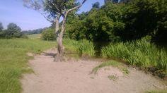 A #suntrap along the #boyneriver. #BoyneValley #River #Meath #Slane #visitslane