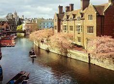 Punting, The Varsity Hotel & Spa, Cambridge, England, UK www.scudamores.com