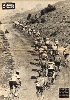 Tour de France 1965.....!