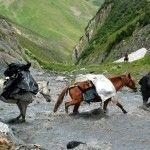 Trekking Omalo Schatili mit Kaukasus-Reisen