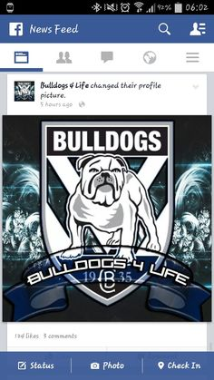 Canterbury Bankstown Bulldogs! Nrl Bulldogs, Canterbury Bulldogs, Bulldog Wallpaper, Bulldog Mascot, Rugby League, Doggies, Photo Galleries, Berries, Wallpapers