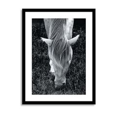 "West Elm Minted for West Elm, Mystery Horse, 20""x26"", White Frame -... ($169) ❤ liked on Polyvore featuring home, home decor, white home accessories, west elm, horse home decor and white home decor"