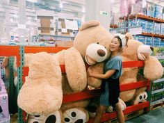 Someone posted a photo of a HUGE bear for sale at some Costco store (location unknown).  Now, that's a Very Large Bear!  No word on how much it costs.
