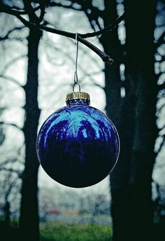 Royal Blue Christmas